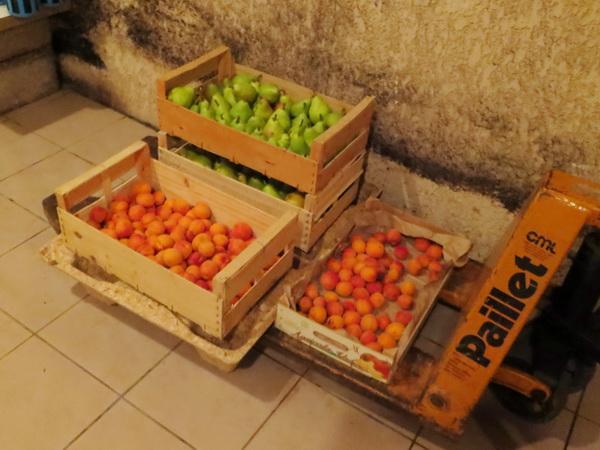 levet früchte