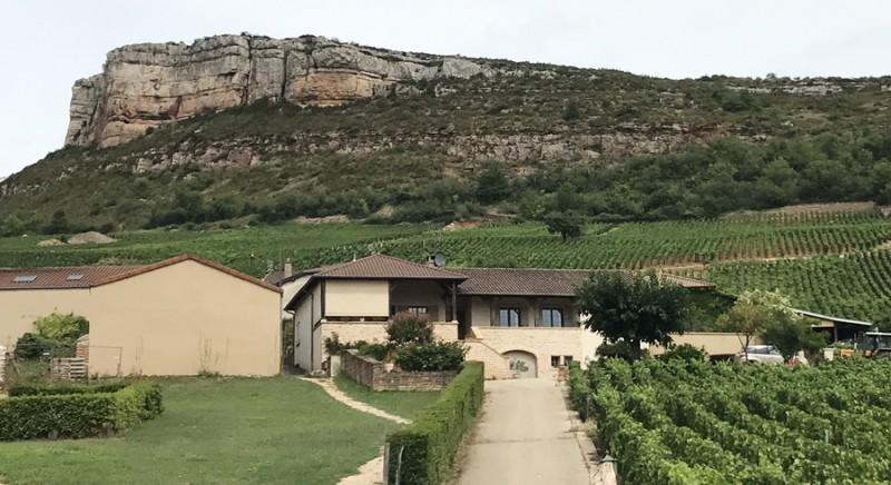Domaine Barraud