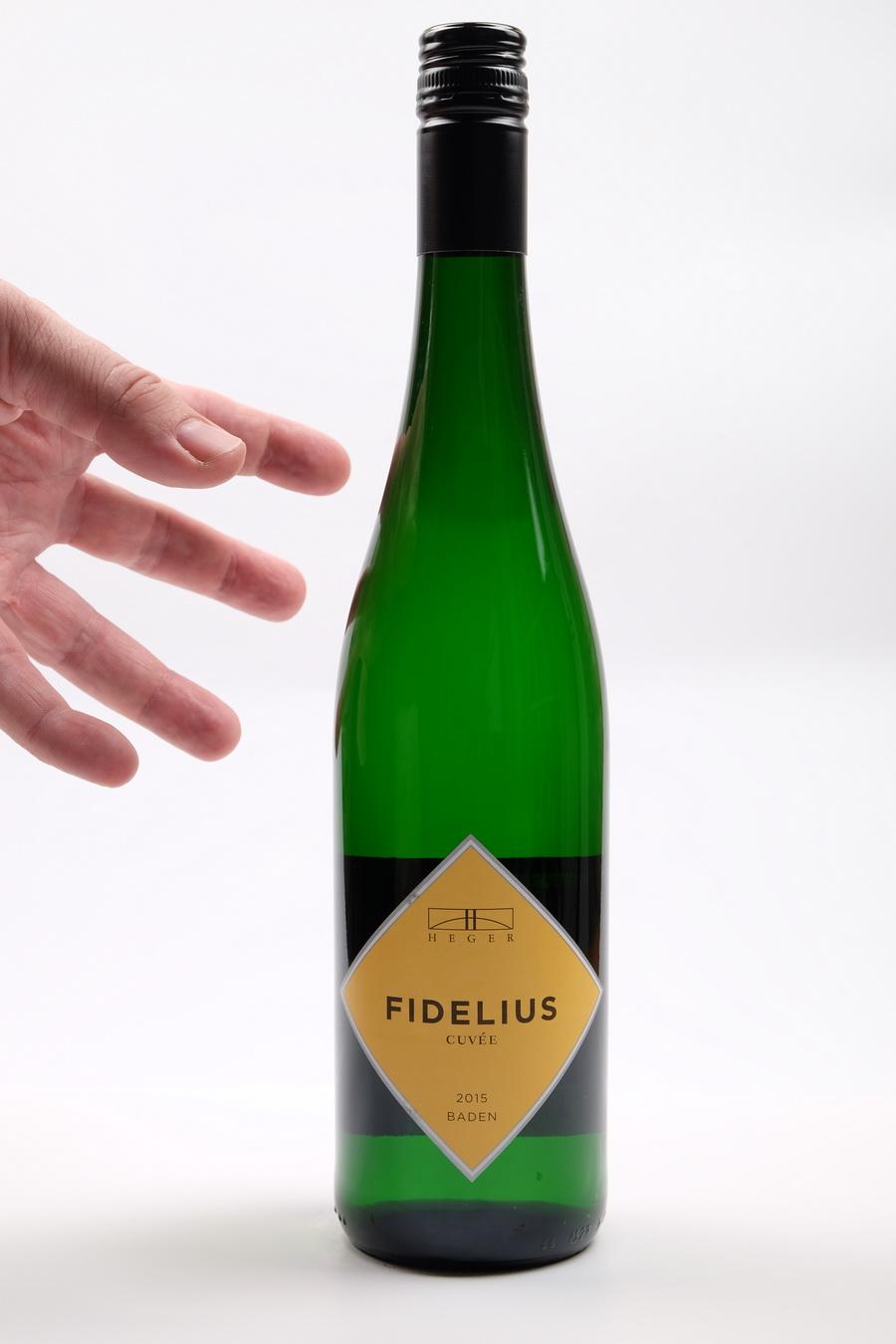 FIDELIUS 2017